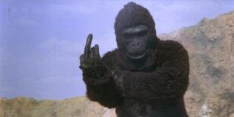 """Ape"" de Paul Leder, 1976"
