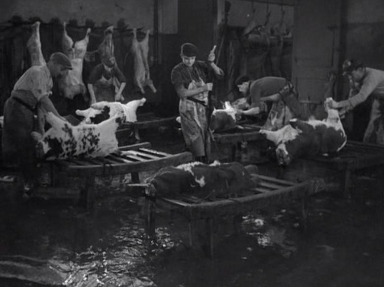 """""""Le sang des bêtes"""" de Georges Franju, 1952"""