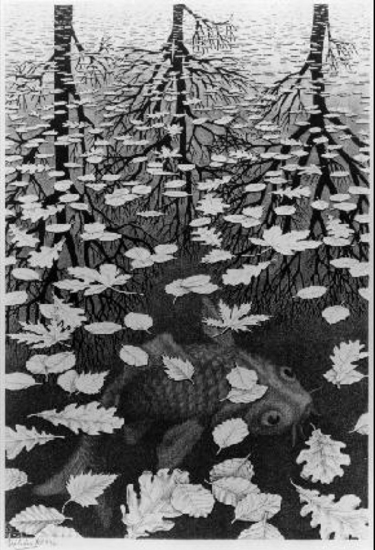 """Three world"", lithographie d'Escher, 1955, http://www.mcescher.com/"