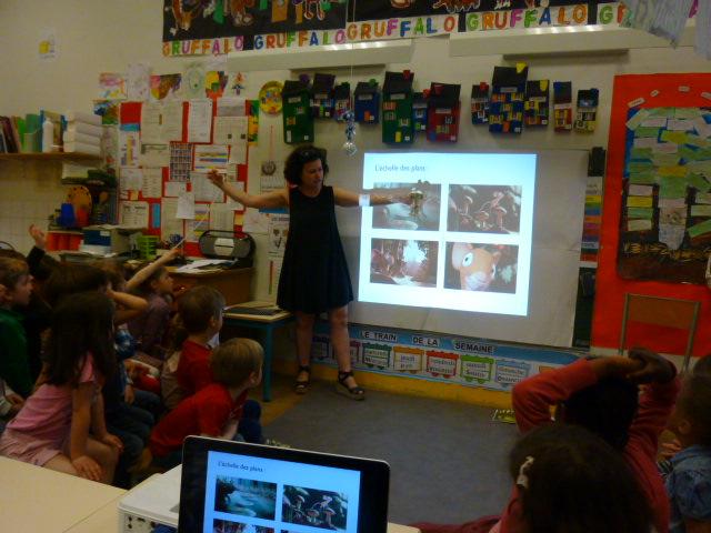 La classe de MS de Lucie Razoux découvre l'échelle des plans ...